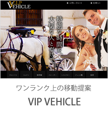 VIP VEHICLE